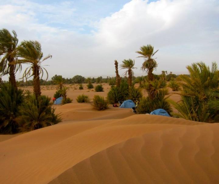 Sahara desert camp