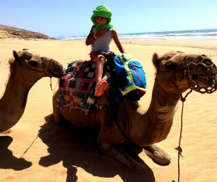 atlantic coast camel trekking